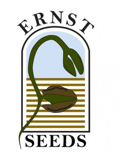 ERNST SEEDS Logo_New Web Based Colors_Vector Logo 2011_1